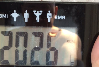 My Basal Metabolic Rate (BMR) for My Last Diet Plan & How to Get Rid of Belly Fat Weigh In 2